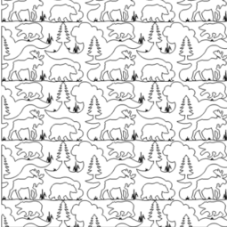 Bear Moose